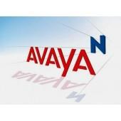 Avaya NTDK92BBE5